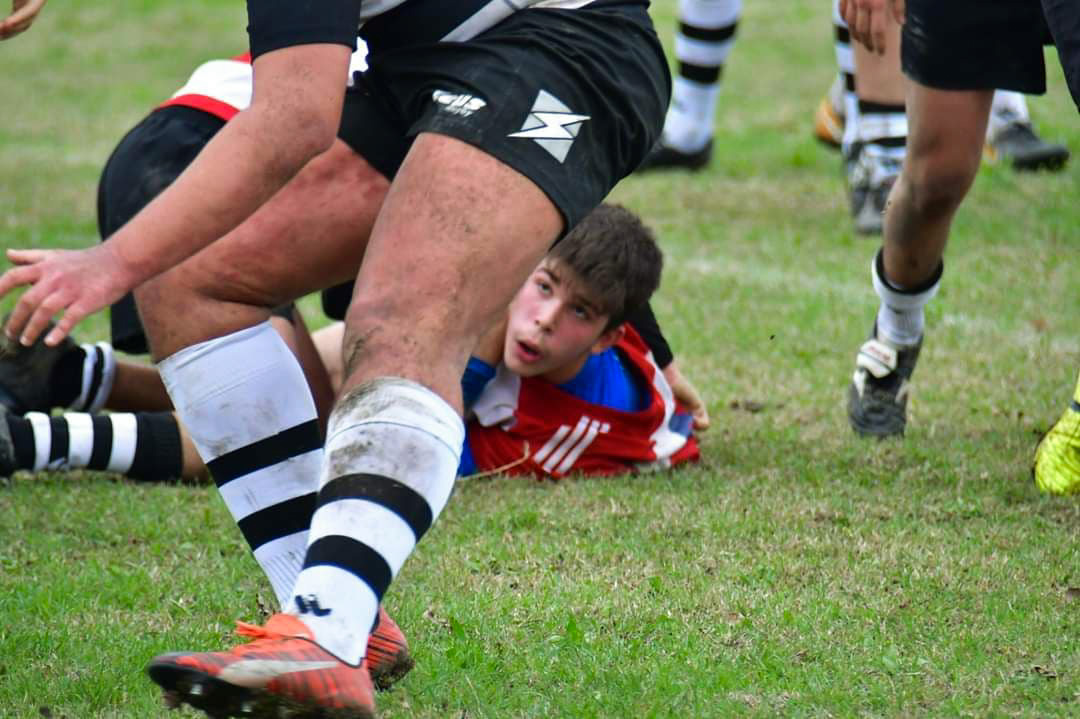 Il Rugby torna in campo
